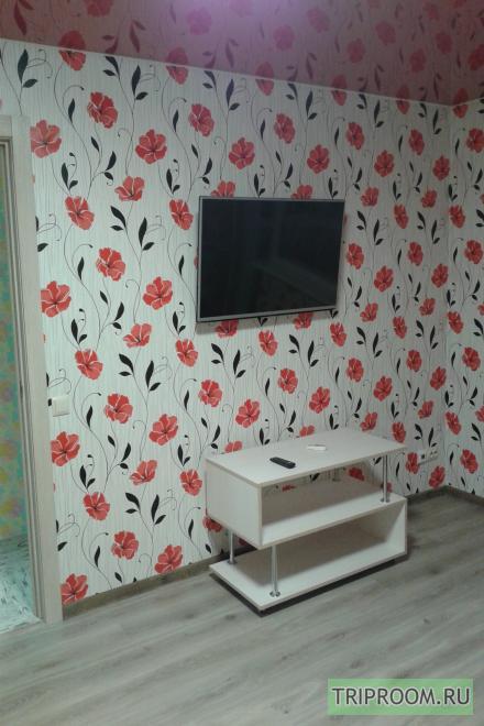 1-комнатная квартира посуточно (вариант № 15586), ул. Ефремова улица, фото № 2